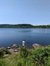 Devon pond